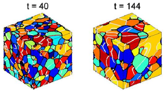 Evolution of a 3D structure with misorientation dependent grain boundary energy.   Grains with similar orientation have a similar color.  Boundaries with low misorientation  are white (1.5° misorientation) and gray (3°), special high angle boundaries (37.5° misorientation) are red and the other boundaries are black.