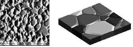 In-situ STM image of grooving at the surface of a gold film (Rost el al. 2003) and an image of a 3D phase field simulation of grain growth and grooving in a thin film.